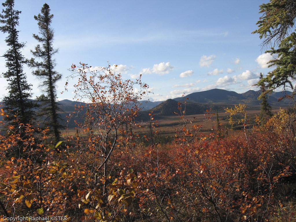 La Bell - Montée vers le point d'observation de la plaine aux milles caribous