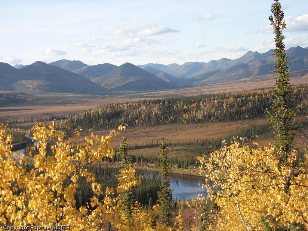 La Bell - La plaine aux milles caribous