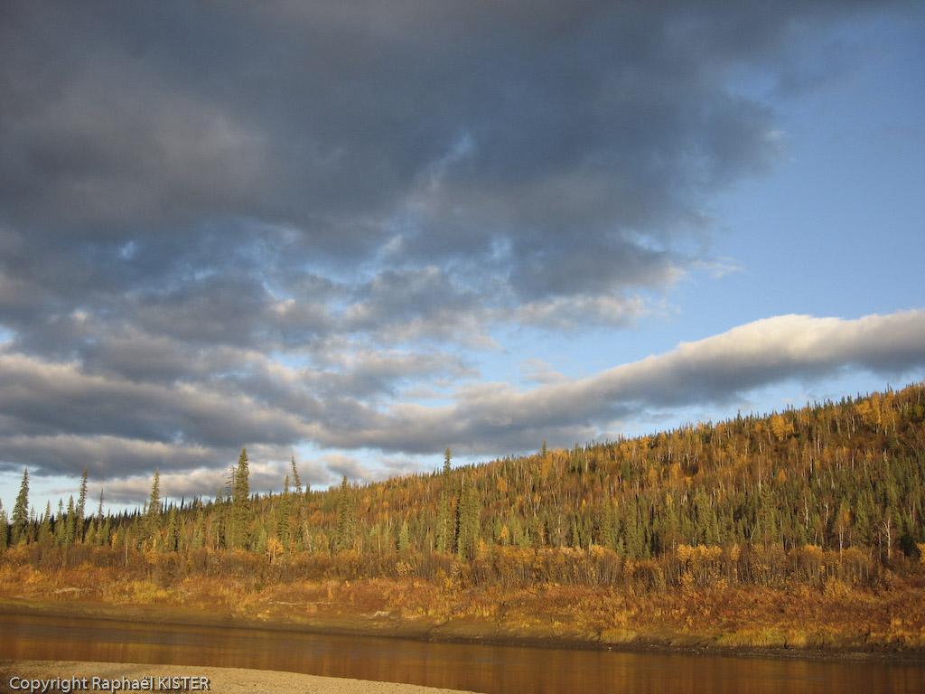 La forêt boréale depuis la Bell