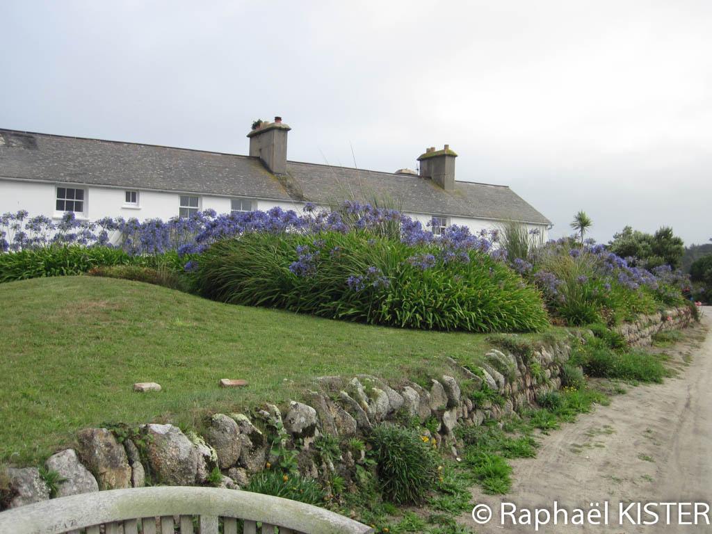Cottage à Tresco